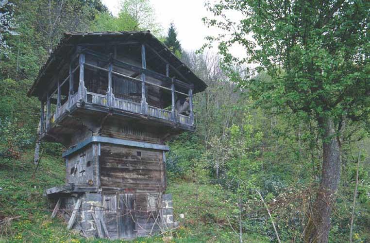 Eastern Black Sea House