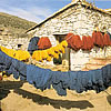 Drying Newly Dyed Wool